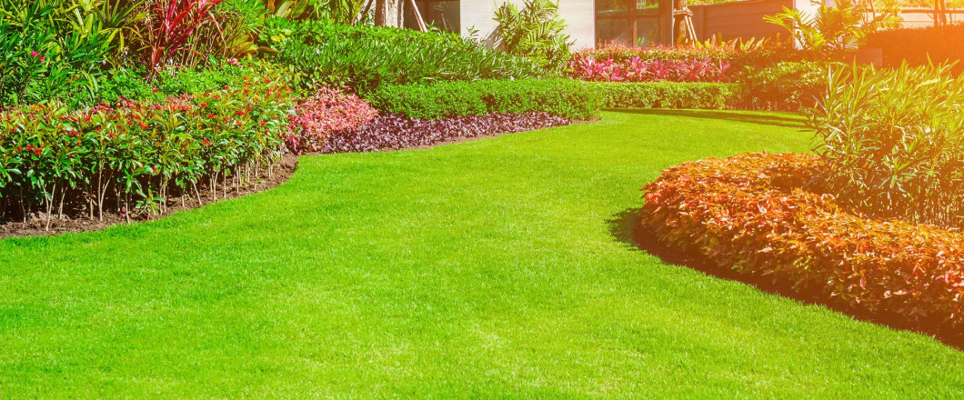 Your Trusted Landscaping Experts in Rockford, MI